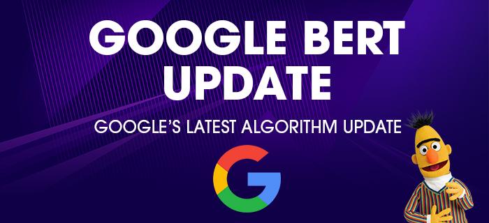 BERT Search Algorithm Update